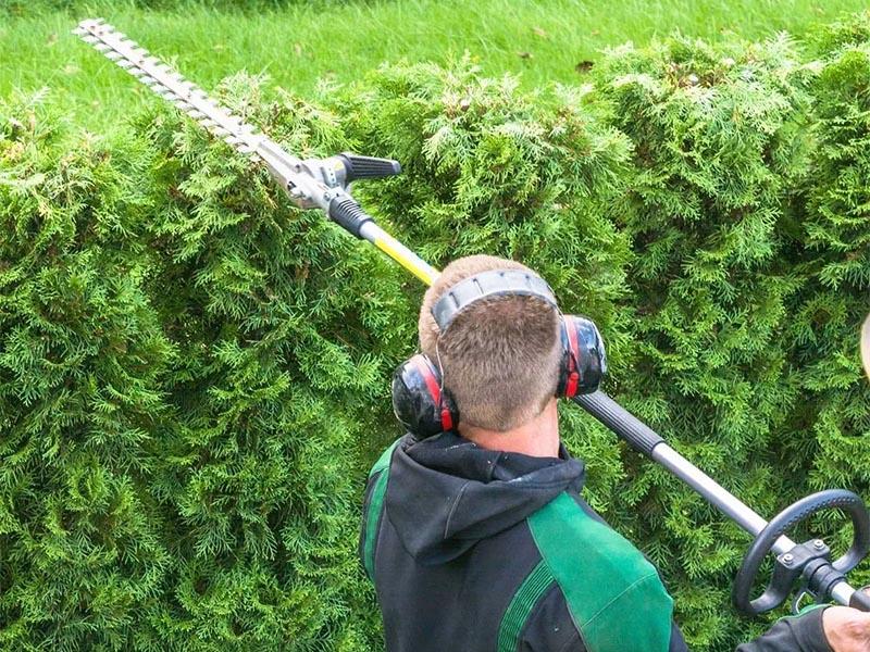 hedging-min