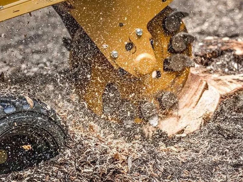stump-grinding-min