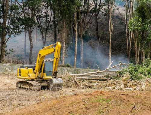 Who to call for land clearing services in Brisbane